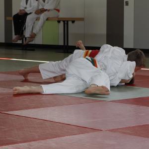 Judosafari 2013 - 04